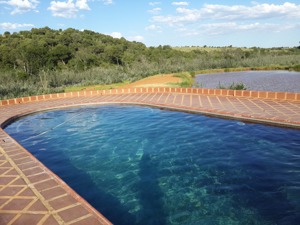 Swimming pool overlooking waterhole - Askari Lodge