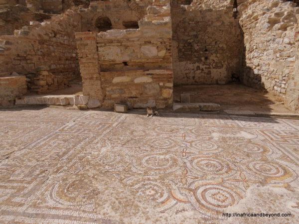 Original Floors Ephesus