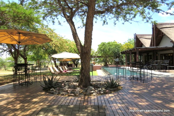 Waterberg Lodge Zebula