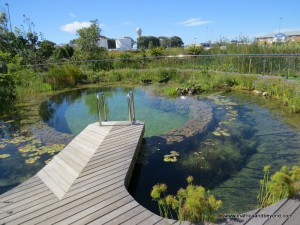 Hotel Verde eco-pool