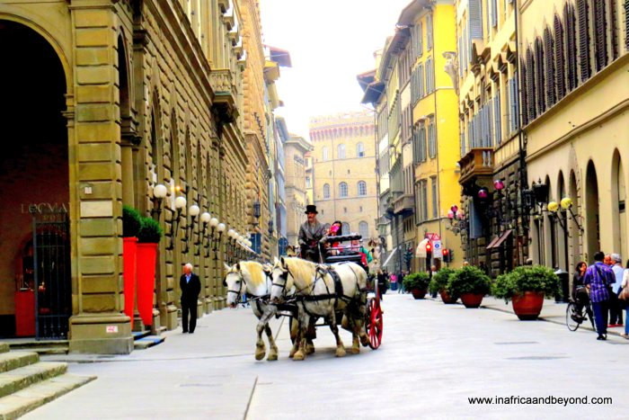 the best city in the world - Horse and cart in Florence