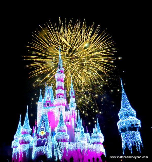 Wishes! Night-time Spectacular