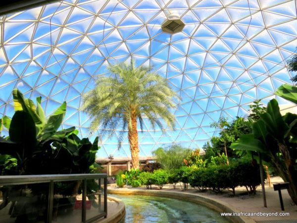 Inside Spaceship Earth