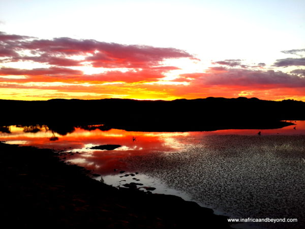 African Bush Sunset - Photos of South Africa
