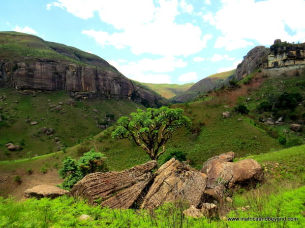 Drakensberg Mountains - Photos of South Africa