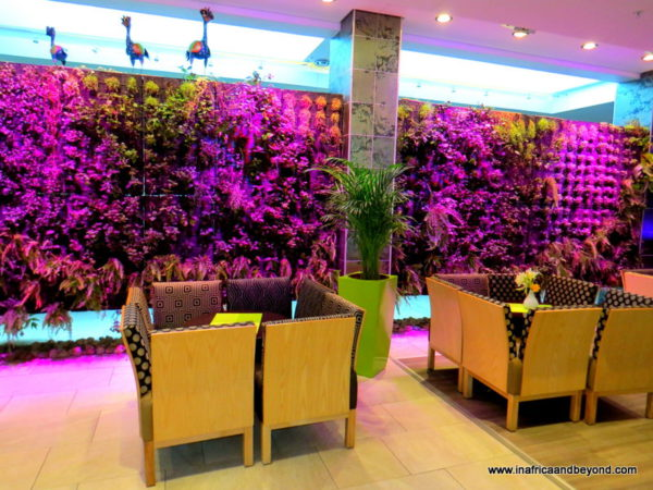 Living Wall - Hotel Verde - Photos of South Africa