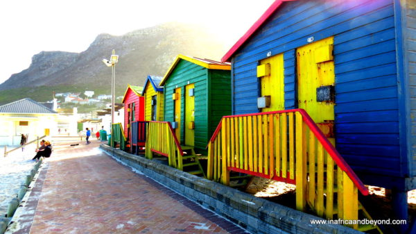 Muizenberg beach huts - Photos of South Africa