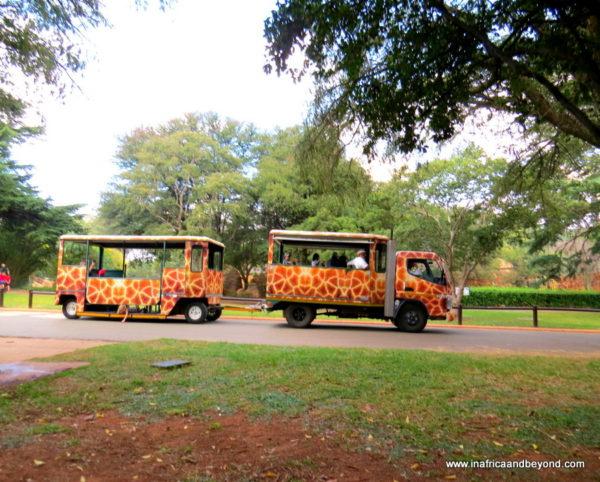 Johannesburg Zoo Ferry