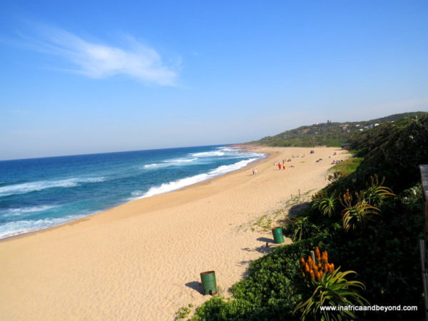 Pennington Beach things to do in KwaZulu Natal