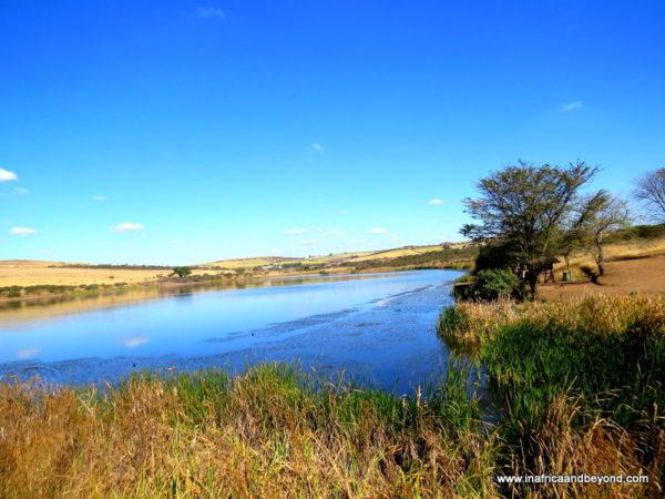 Dam Tala Game Reserve