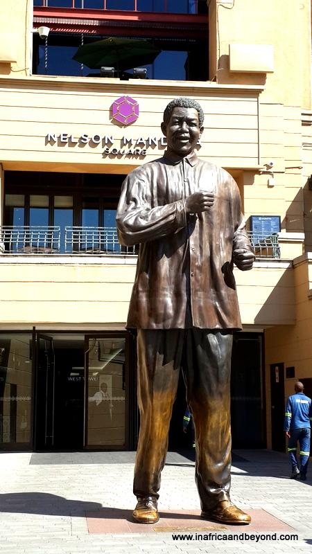 Nelson Mandela Square Cilantros