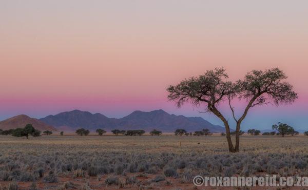 Roxanne Reid Namibia