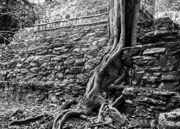 Carol Guttey Mayan ruins