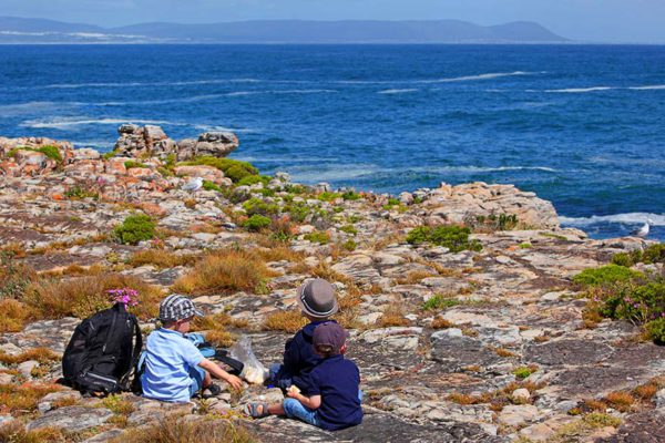 Hermanus South Africa - Full SUitcase family travel blog (6)