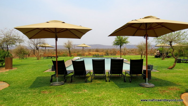 Madikwe Safari Lodge pool