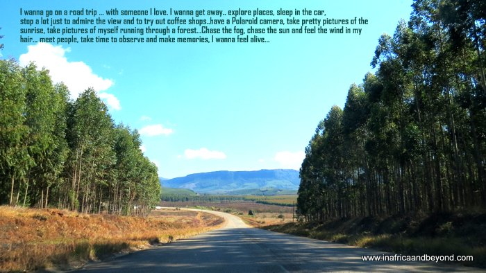 road trips in south africa