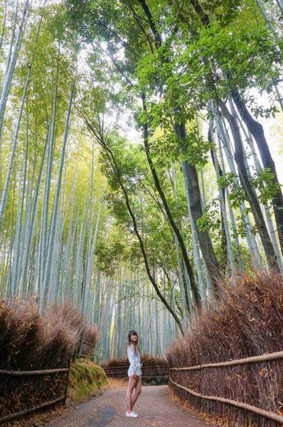 Kollecting Koordinates - Kyoto A(002)