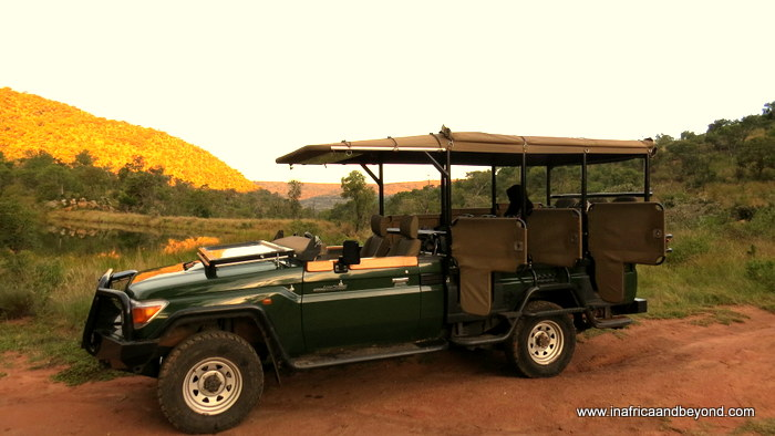 Clifftop game drives