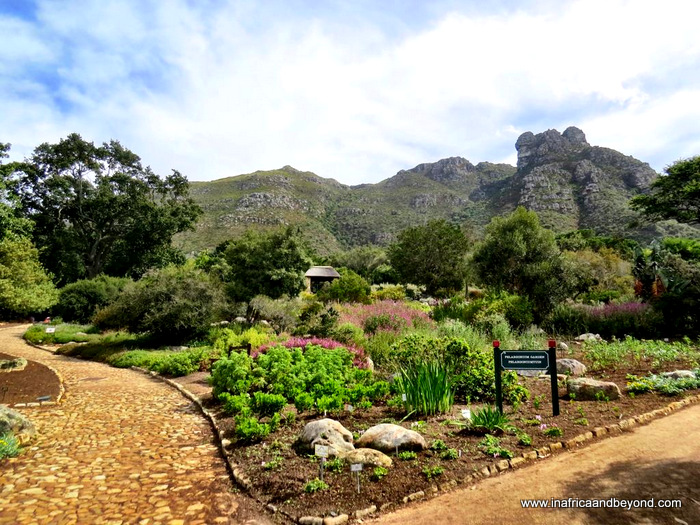 photos of South Africa