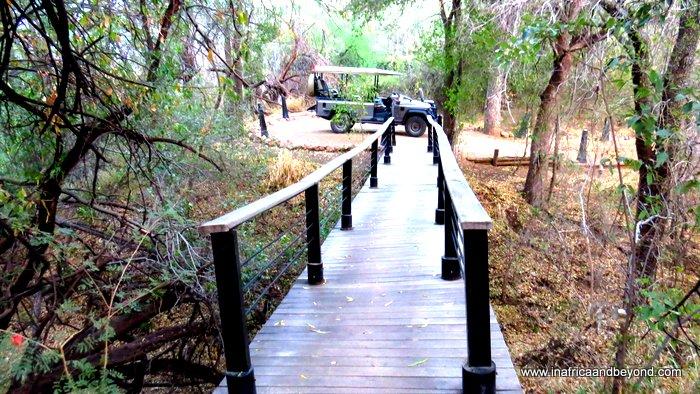 Morukuru Safari