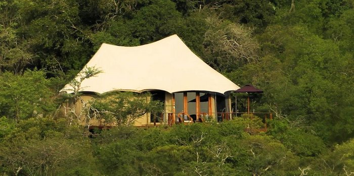 Thanda Safari Destinations in Africa