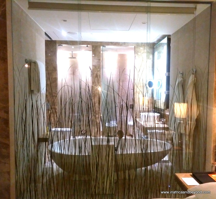 Hyatt Capital Gate bathroom
