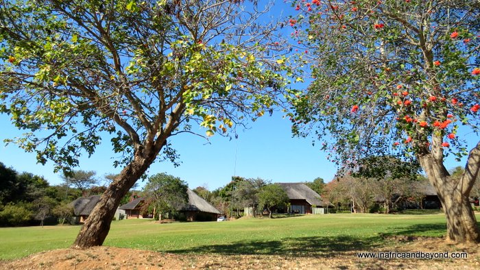 Family time at Kruger Park Lodge - In Africa and Beyond | Africa travel , Family travel