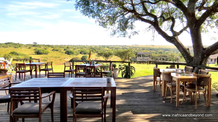Hlosi Game Lodge - where the lions roar 2