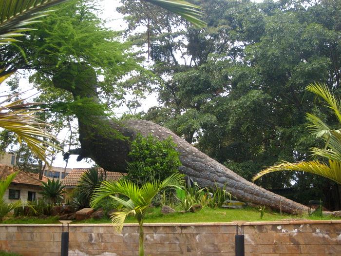 Things to do in Nairobi