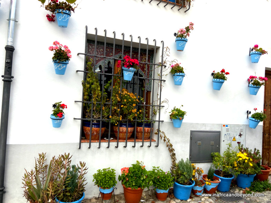 10 Best Things to do in Granada