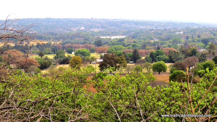 Melville Koppies Nature Reserve