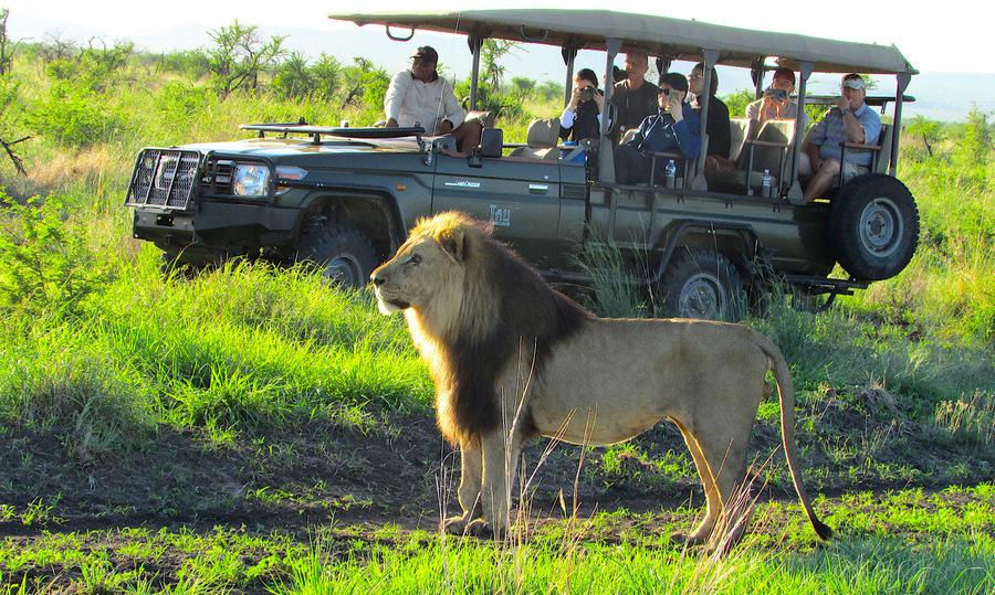 Win a 5-star safari at Tau Game Lodge