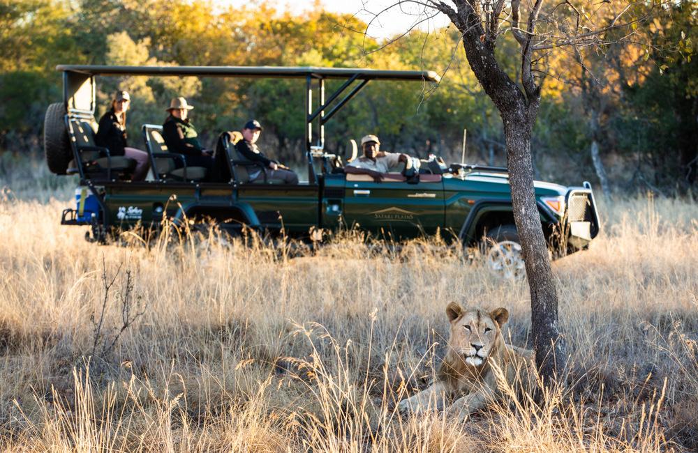 Safari Plains Giveaway