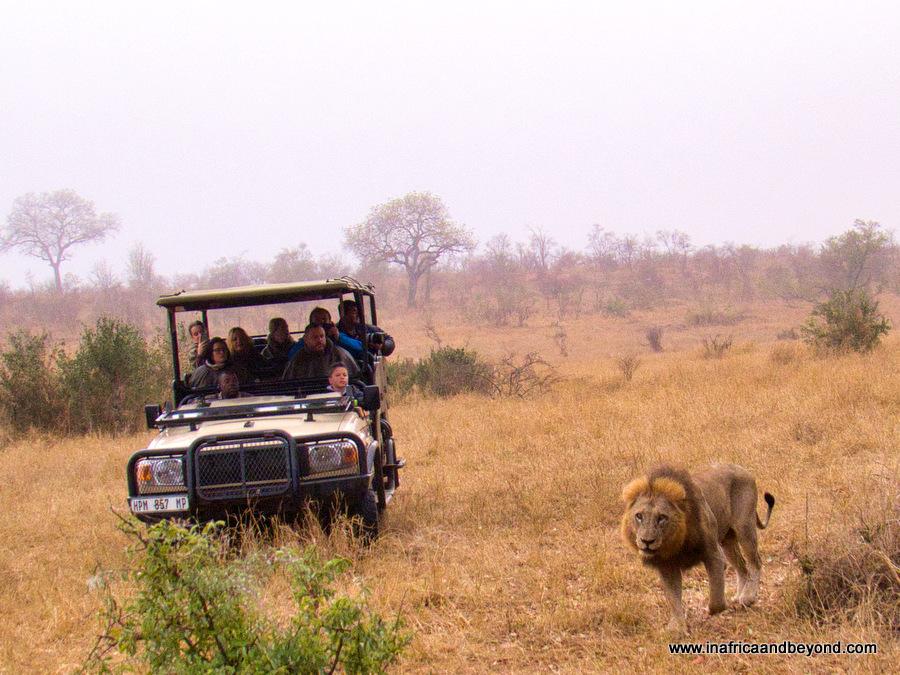 Hoyo Hoyo Safari Lodgeq